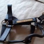 Forrest Skipper leather halter